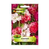 Seminte flori Florian Clarkia mix 1 g