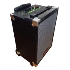 Boxa activa tip troler Temeisheng A8-2, bluetooth, microfon Wireless, cititor USB, suport card SD