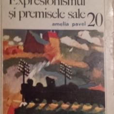 EXPRESIONISMUL SI PREMISELE SALE - AMELIA PAVEL