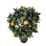 Lamai artificial cu fructe H90