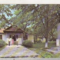 bnk cld Calendar de buzunar - 1989 - Muzeul Judetean Botosani