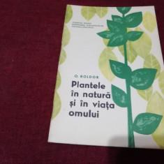 O BOLDOR - PLANTELE IN NATURA SI IN VIATA OMULUI