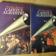 CAIETUL ALBASTRU VOL.1-2 TIMP MORT 1954-1955. REMEMBER 1991-1998 - NICOLAE BALOT