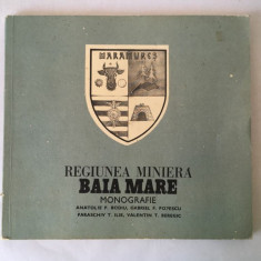Regiunea Miniera Baia Mare Monografie - Anatolie B. Bodiu, Gabriel F. Popescu