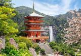 Puzzle Castorland - Seiganto-ji Temple Japan 1000 piese