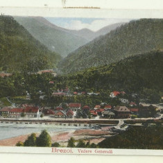 cp Brezoi (Valcea) : vedere generala - circulata,timbre, 1924