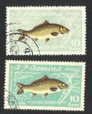 EROARE DE CULOARE -- ROMANIA PESTI -1960 --VEZI SCANARE !!!