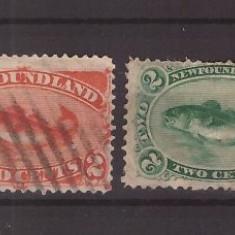 Newfoundland 1880-1896 - Pesti, doua timbre uzate