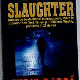 Furie oarba, Karin Slaughter