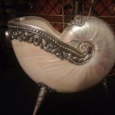 ..Rara!..Superba cochilie mare de Nautilius montată in argint