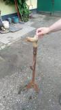 Tăietor fân (văgău)