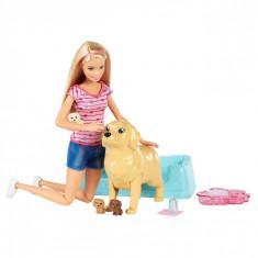 Papusa Barbie, cu catei si accesorii