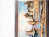 Tablou ulei pe panza, Ionascu Ilie, Peisaje, Altul