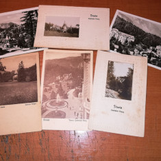 Vederi Sinaia Peles , Pelisor, Cazinou si Palace 1927(necirculate), Necirculata, Fotografie