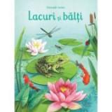 Lacuri si balti (Usborne) - Usborne Books