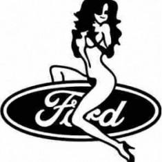 Ford Gagica
