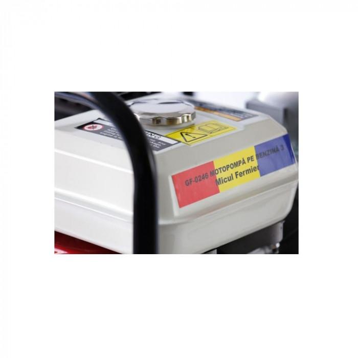 Motopompa 3 Toli Micul Fermier 6.5 CP