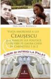 Iubiri si intrigi la palat Vol. 8: Viata amoroasa a lui Ceausescu si a familiei lui politice - Dan-Silviu Boerescu