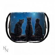 Geanta umar pisici Stele cazatoare 40 cm - Lisa Parker