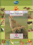 Campiile – colectia Prima mea enciclopedie cu Winnie Ursuletul si prietenii, Disney