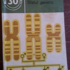 Sfatul genetic – Constantin Maximilian