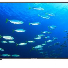 Televizor LED Kruger&Matz 101 cm (40inch) KM0240FHD, Full HD, CI+