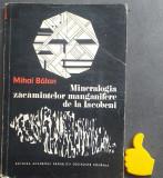 Mineralogia zacamintelor manganifere de la Iacobeni Mihai Balan