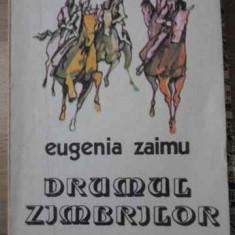 DRUMUL ZIMBRILOR - EUGENIA ZAIMU