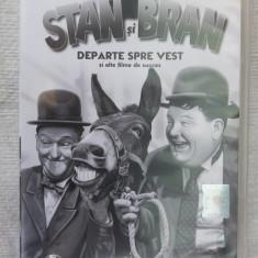 STAN SI BRAN 5 DVD-URI ., Romana