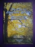 HOPCT  FLORI DE TEI /ANTOLOGIE DE HAIKU-LIME TREE PLOWERS  2006 / 40  PAGINI