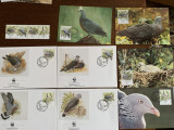 Madeira - pasari - porumbel - serie 4 timbre MNH, 4 FDC, 4 maxime, fauna wwf
