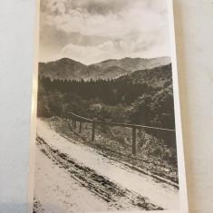 Baia Sprie Maramures 1942, Necirculata, Fotografie