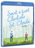 Charlie St. Cloud (coperta in ceha, subtitrare in romana) - BLU-RAY Mania Film