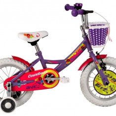 Bicicleta Copii DHS 1402 Violet 14