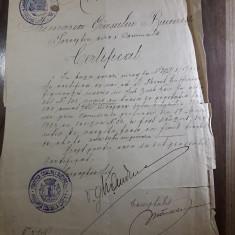 Act vechi certificat 1924 Bucuresti