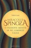 Miracolul Spinoza, Frederic Lenoir