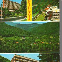 CPIB 15382 - CARTE POSTALA - CACIULATA, MOZAIC