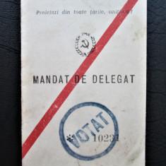 Rar ! Legitimatie: Mandat de Delegat PMR cu Drept de Vot, 1964 + Autobiografie