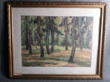 Tablou Vechi - Ulei pe Carton - Padure - Semnat
