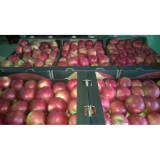 Vand mere din soiurile Jonathan, Florina, Mutzu si Starkinson 1,5lei/kg