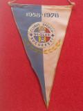 Fanion - Clubul Sportiv Scolar BUCURESTI (aniversare 1958-1978)
