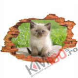 "Sticker ""Wall Crack"" Cat 4 - 120 x 80 cm"