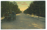 4611 - RAMNICU-SARAT, Buzau, Railway Station Ave, Romania - old postcard  unused