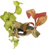 Decor Radacina Cu Plante Small