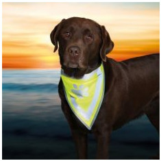 Eşarfă reflectorizantă pentru câini, cu imprimeu- mărimea XS-S