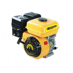 Motor benzina 5.5 CP Gospodarul Profesionist