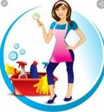 Servicii de curățenie, Generic