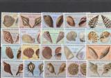 Fauna ,cochilii ,scoici , colonie Portugheza,Angola .