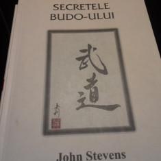 SECRETELE BUDO-ULUI - JOHN  STEVENS,ED MIX,2003,111 PAG STARE BUNA