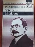PE URMELE LUI VICTOR BABEȘ - MIHAI NEAGU BASARAB